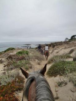 pebble beach horseback riding 3