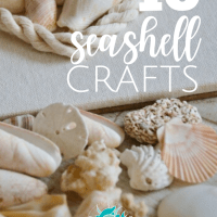 10 Seashell Crafts
