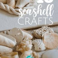 10 Seashell Crafts
