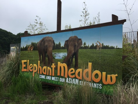 Happy Days: 5 Great animal attractions to visit in Southern England. Image of Elephant Meadow sign at Woburn Safari Park