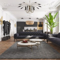 Modern Black Living Room Ideas For Rooms Apartment In Kiev With Design