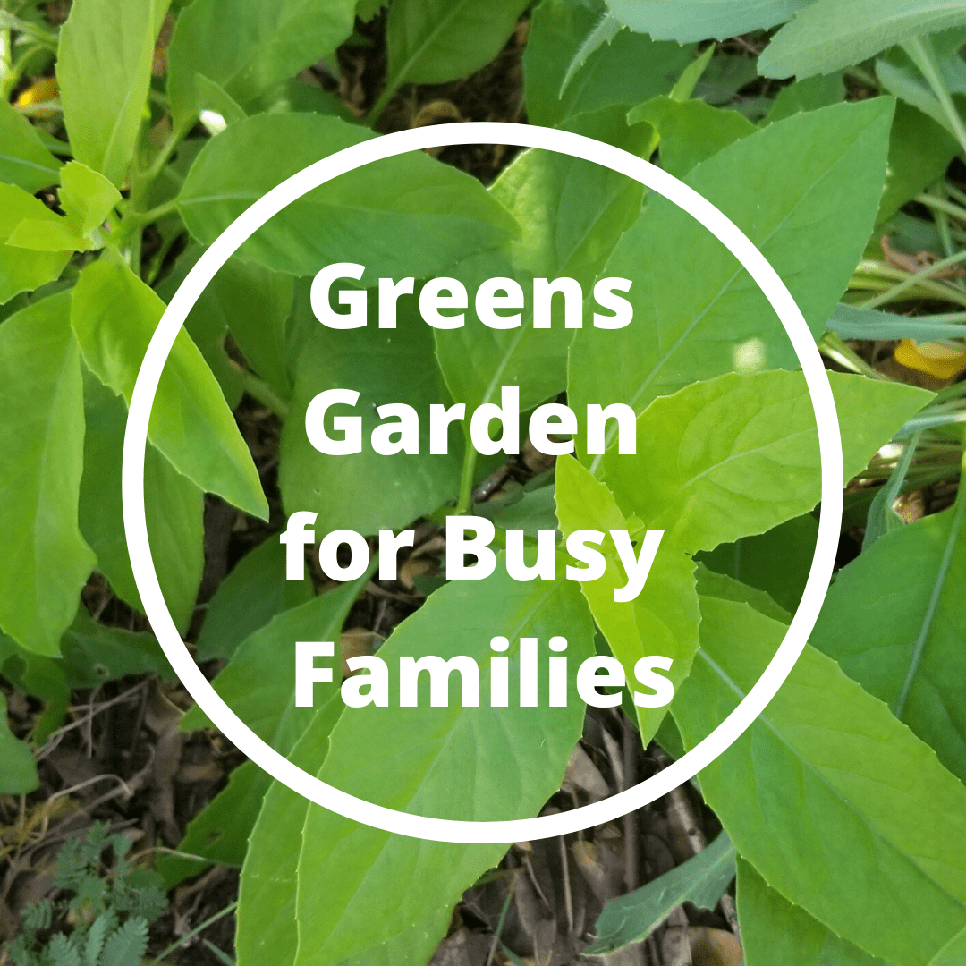 Vegetable Gardening Course - Garden for busy families