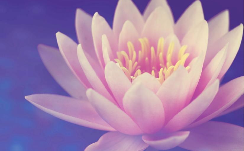 Meditation—Just Do It
