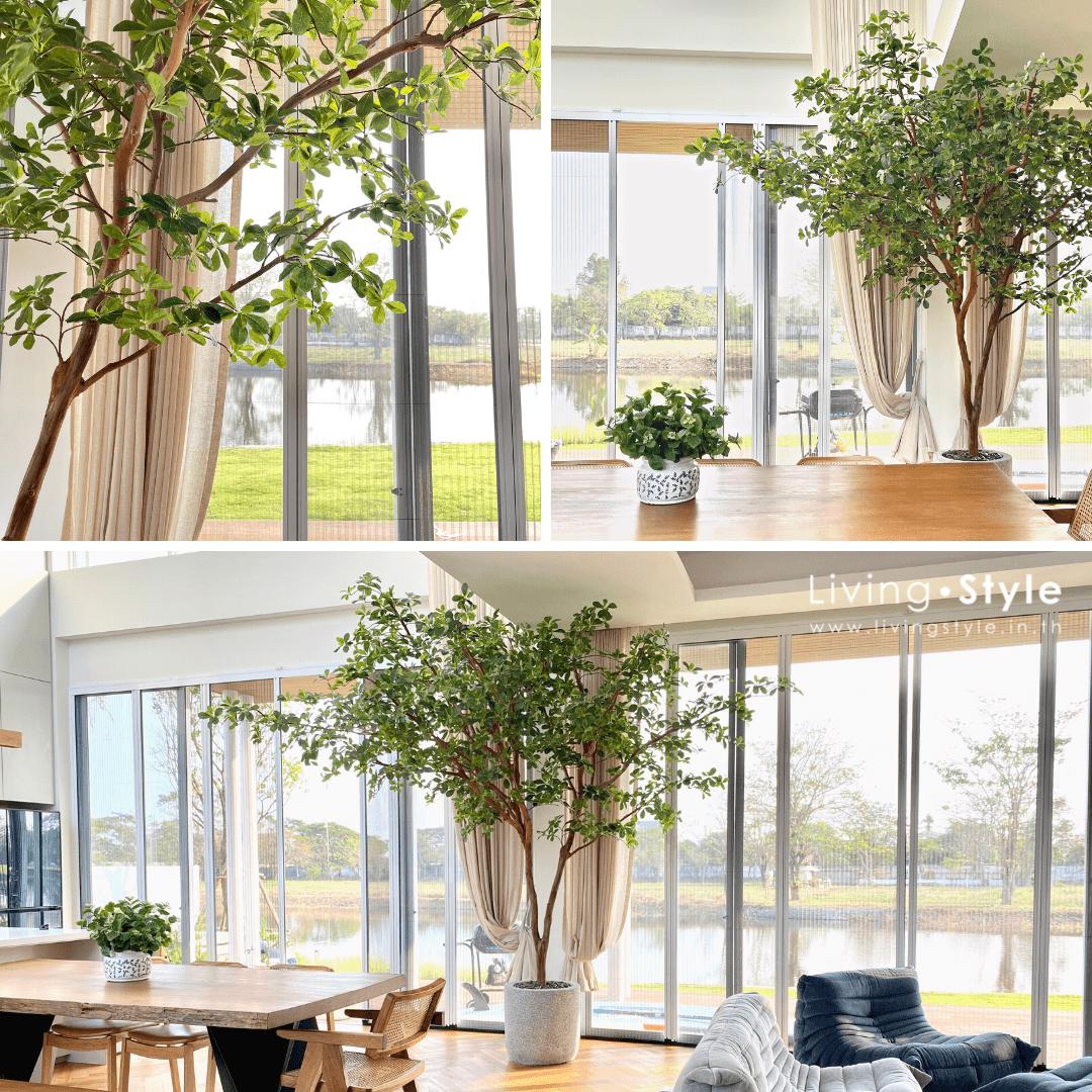 ต้นไม้ในบ้าน ต้นไม้ประดิษฐ์เหมือนจริง ต้นไม้ใหญ่ %%sep%% Livingstyle แจกันดอกไม้ ดอกไม้ปลอม ต้นไม้ปลอม ต้นไม้ประดิษฐ์ สวนแนวตั้ง สวนหย่อม จัดสวน