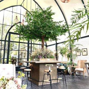 จิบกาแฟใต้ต้นไม้ใหญ่...กลางร้านกาแฟสุดชิค ด้วยต้นไม้ประดิษฐ์ขนาดใหญ่ สร้างมุมมอง มุมถ่ายรูป และเอกลักษณ์ให้กับสถานที่ของคุณ %%sep%% ต้นไม้ปลอม