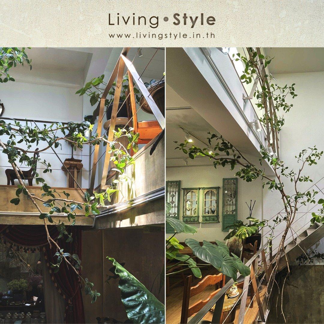 ตกแต่งร้าน ต้นไม้ปลอม โถงบันได สไตล์วินเทจ ย้อนยุค %%sep%% Livingstyle แจกันดอกไม้ ดอกไม้ปลอม ต้นไม้ปลอม ต้นไม้ประดิษฐ์ สวนแนวตั้ง สวนหย่อม จัดสวน