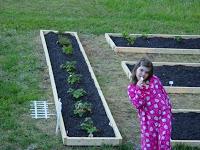f62b8-gardenpumpkinkids014