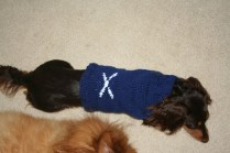 Nessie finished Scotland Sweater
