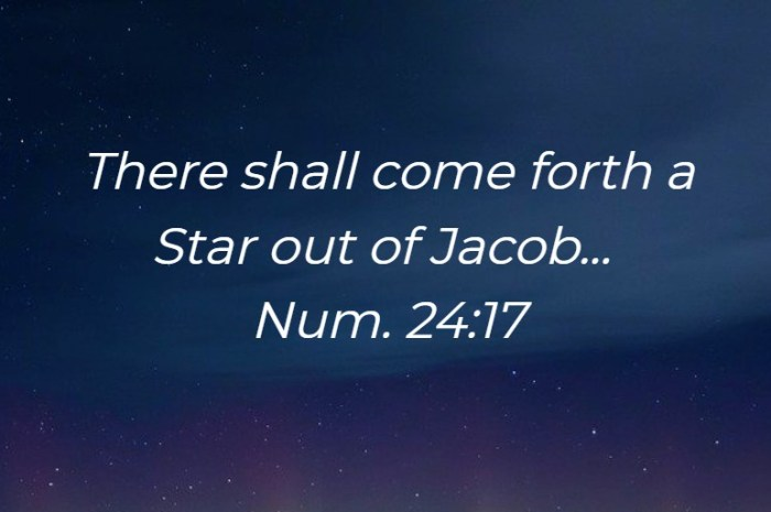 Following the Star out of Jacob led me to the Lord and the Church Life