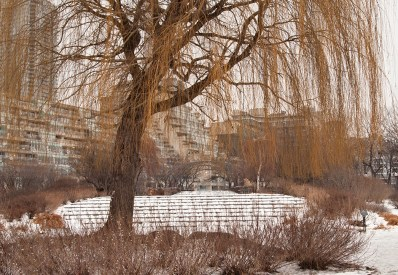 Willow and snow-covered steps at concert venue.
