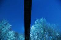 From underneath Rosedale Ravine Bridge in Toronto.
