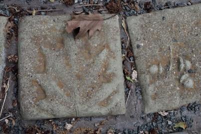 Oak leaf tile.