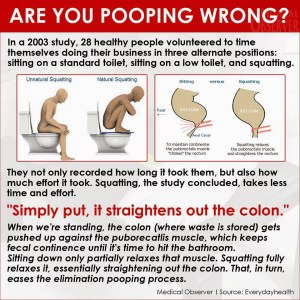What is the Proper Way to Poop?
