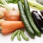 野菜作り初心者が楽しくできる基本!