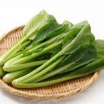 小松菜の栄養や効果効能と食べ方【女性や子供に食べてほしいカルシウム野菜】