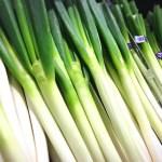 長ネギのもつ栄養の特徴と使い方【長ネギの調理の仕方】