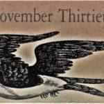 11月30日生まれの運勢と性格【星座/占星術とタロットで導く誕生日占い】