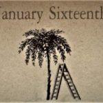 1月16日生まれの運勢と性格【星座/占星術とタロットで導く誕生日占い】