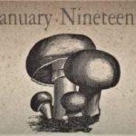 1月19日生まれの運勢と性格【星座/占星術とタロットで導く誕生日占い】