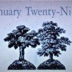 1月29日生まれの運勢と性格【占星術とタロットで導く誕生日占い】