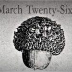 3月26日生まれの運勢と性格【占星術とタロットで導く誕生日占い】