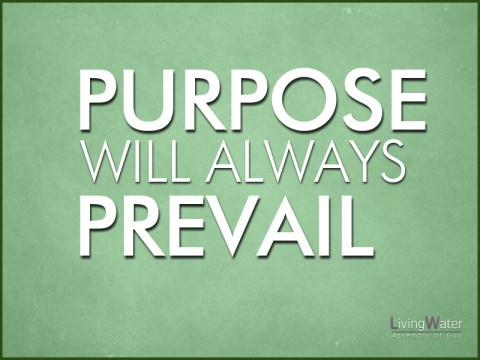 Purpose Will Always Prevail