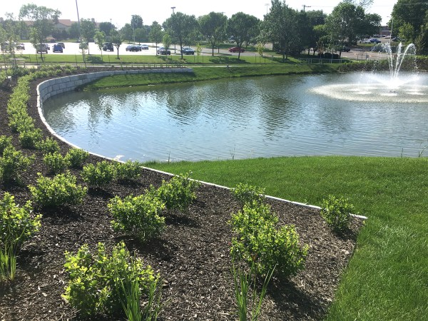 keeping retention ponds healthy