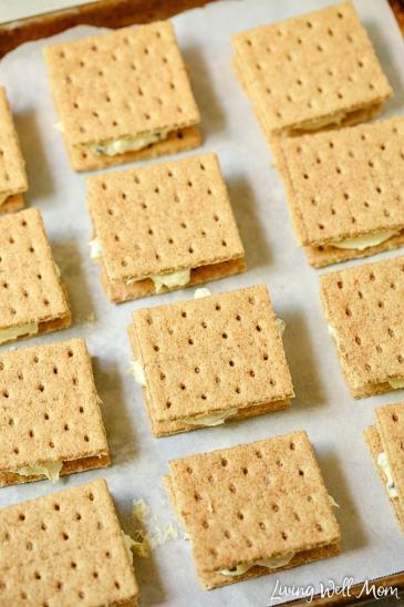 graham cracker ice cream sandwiches squares