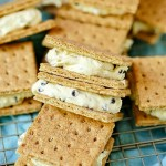 graham cracker ice cream sandwich squares