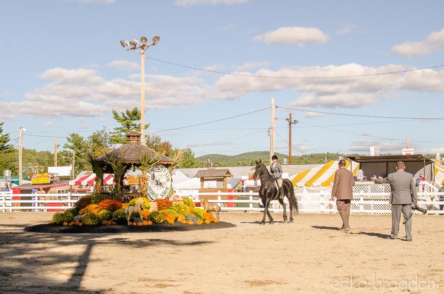 Deerfield Fair-16