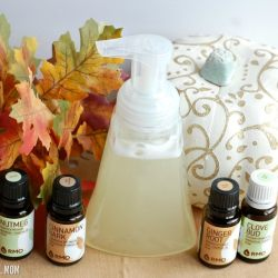 Enjoy the pumpkin spice scent? Try this DIY pumpkin spice foaming hand soap that takes just 5 minutes to make and smells like fall while also fighting germs!