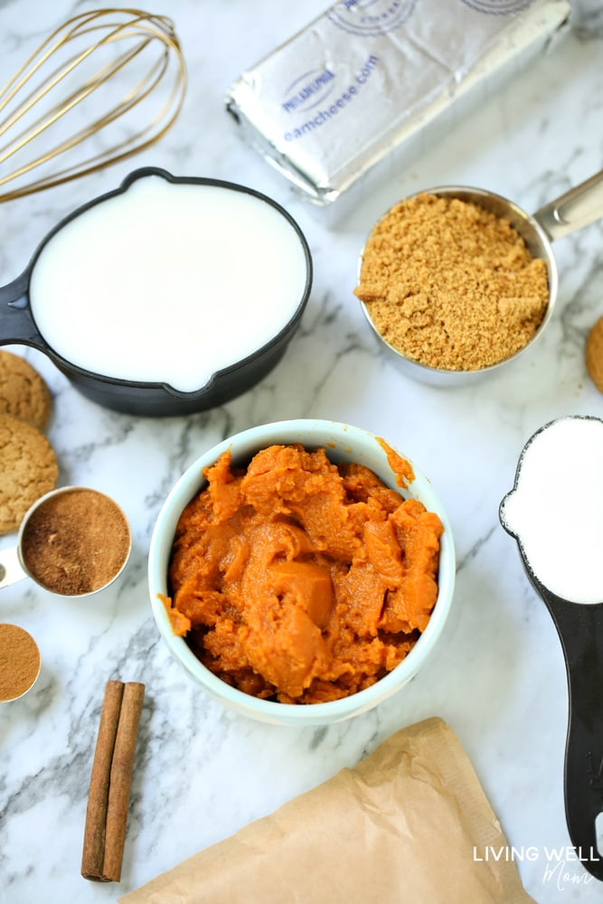 This recipe for Whipped Pumpkin Spice Mousse takes less than 10 minutes to prepare, and with no baking required, it's a quick and easy, delightfully creamy pumpkin dessert your whole family will love!