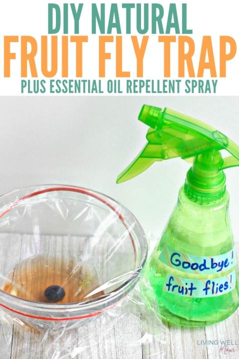 natural fruit fly trap with essential oil repellent spray