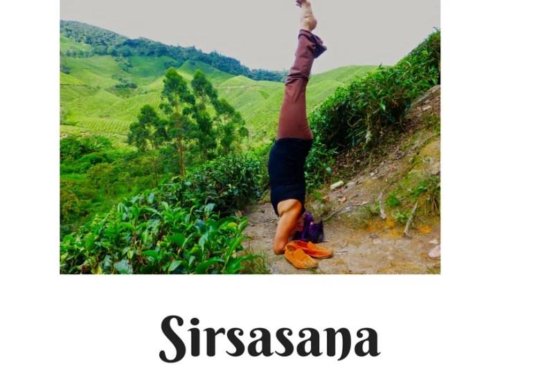 Sirsasana – A Reflective Asana