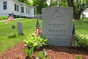 In Remembrance of War Dogs