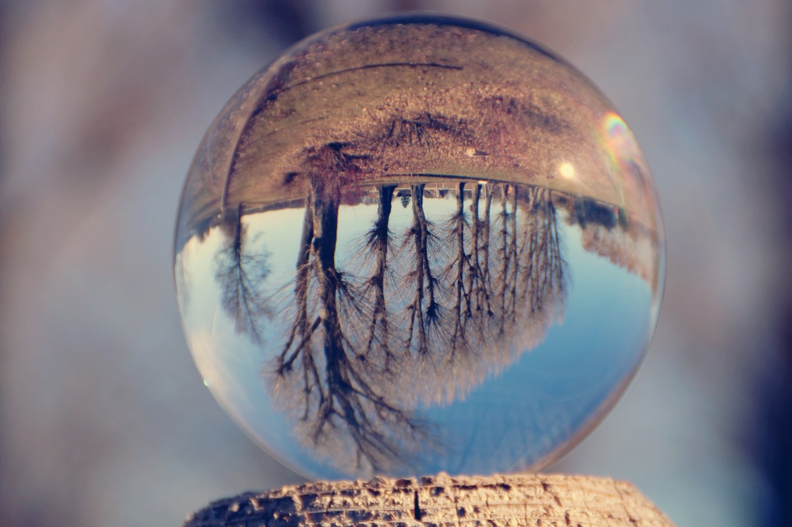 upside-down-glass-ball