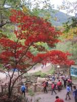 Hwang San