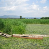 Upo Wetland's Trail