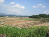 Upo Wetlands (15)