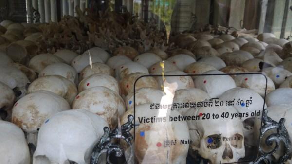 Cambodia Killing Fields Skulls