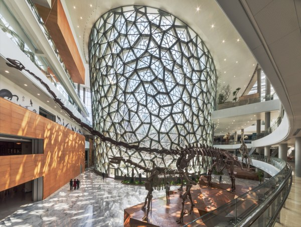Shanghai Natural History Museum In China Perkins
