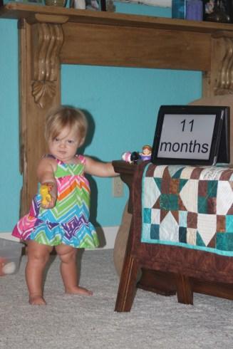 11 months - 3