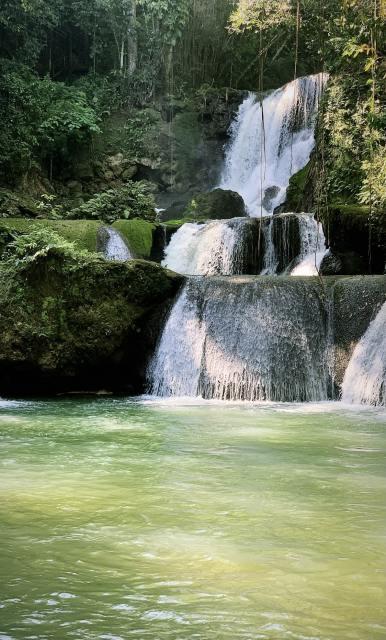 Majestic YS Falls