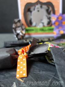Détails sur le noeud du ruban halloween