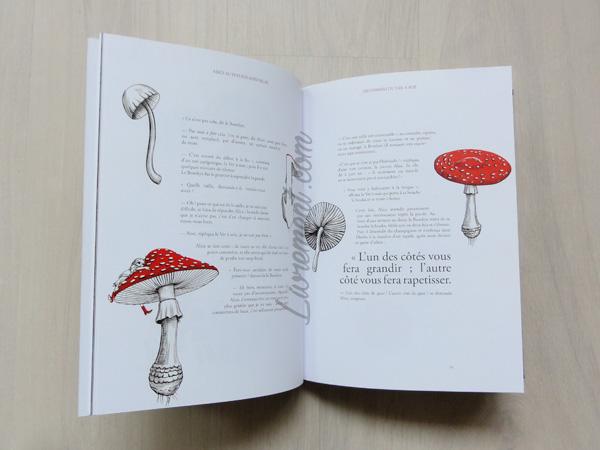 Dessins champignons issus du livre Alice au pays des merveilles de Benjamin Lacombe