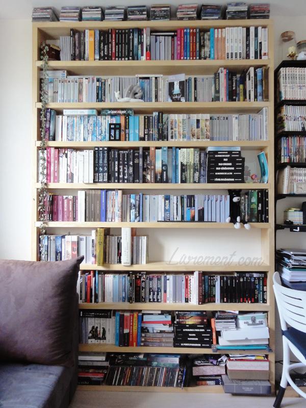 Bibliothèque des romans en 2017