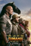 Couverture du film Jumanji : next level