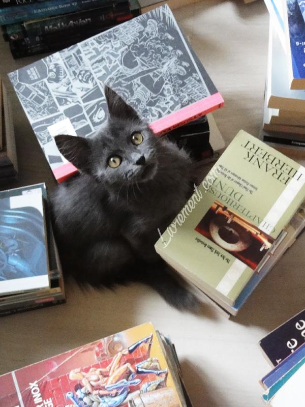Moriarty au milieu des livres