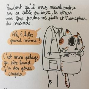 Chat -Ne plus craindre la visite chez le véto -Vivre vieux et gros - Michel PLée