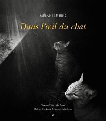 Mélani Le Bris -Dans l'oeil du chat
